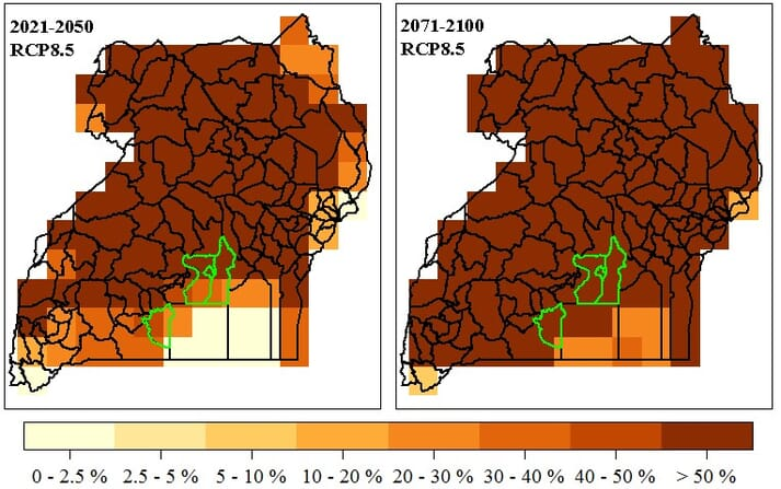 Frequency of severe heat stress events for pig in Uganda by 2021-2050 and 2071-2100 periods.
