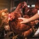 Live poultry linked to Salmonella outbreaks in United States thumbnail image