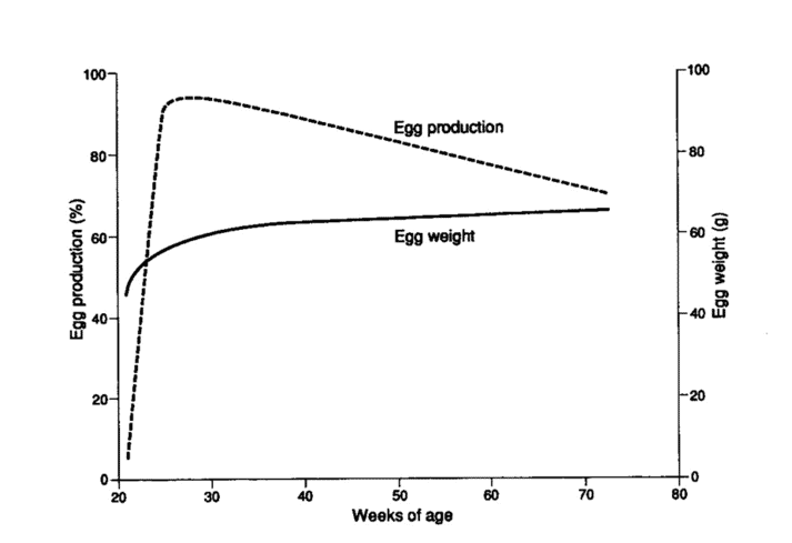 Typical egg production curve and egg weight values for egg-laying flocks