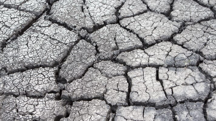 New report identifies poor soil health as national security threat thumbnail image