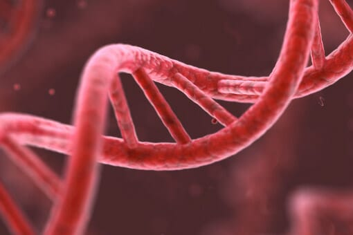Does PCR always offer an answer? - Thermo Fisher