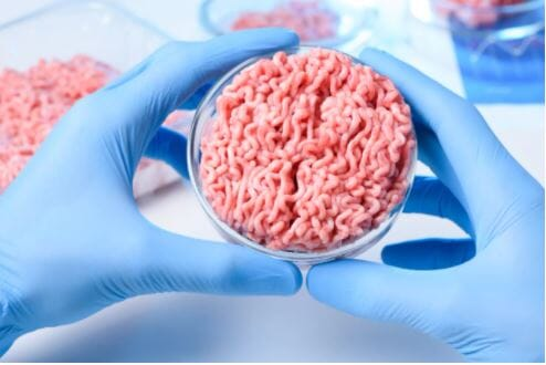 Generation Z aren't ready to eat cultured meat but are concerned by the environmental impacts of traditional livestock farming, according to University of Sydney research.