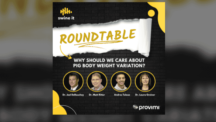 Swine it #102:  Roundtable: Why should we care about pig body weight variation? - Dr. Joel DeRouchey, Dr. Matt Ritter, and Andres Tolosa thumbnail image