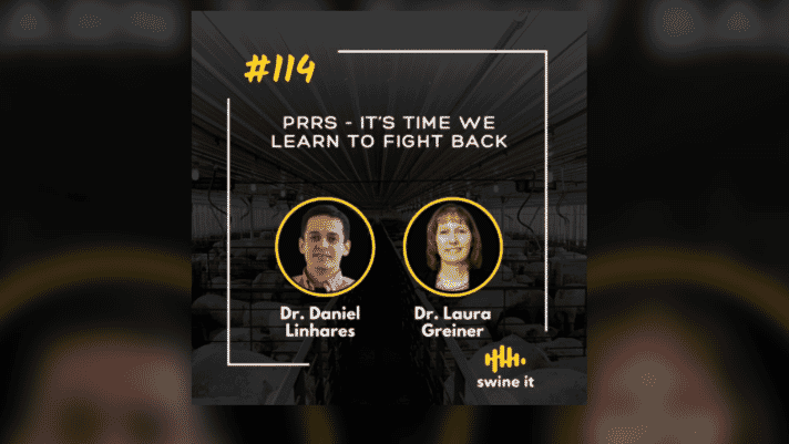 Swine it #114:  PRRS - it's time we learn to fight back - Dr. Daniel Linhares thumbnail image