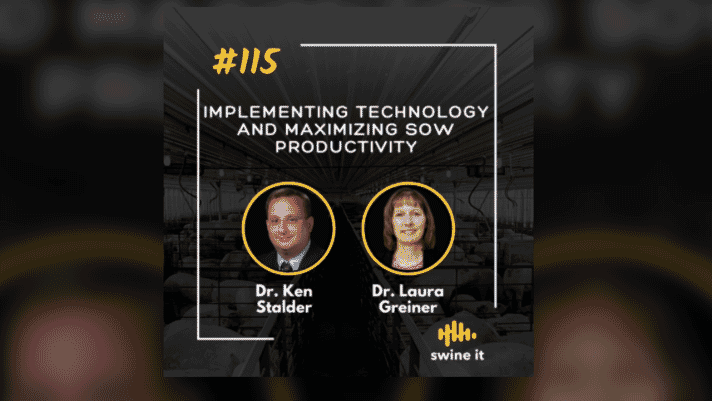 Swine it #115:  Implementing technology and maximizing sow productivity - Dr. Ken Stalder thumbnail image