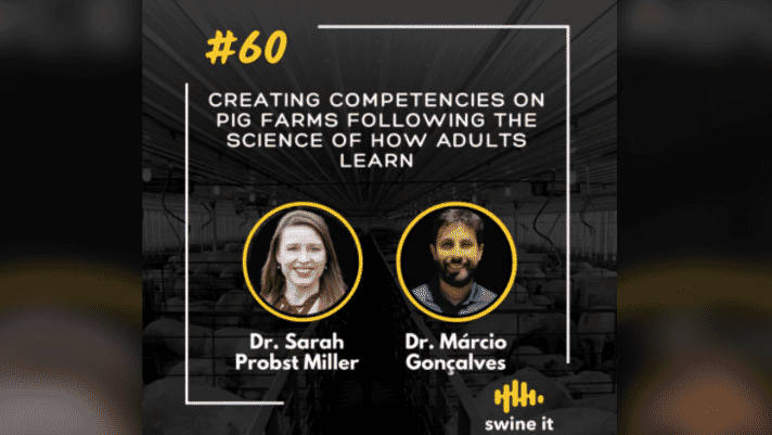 Swine it #60: Creating competencies on pig farms following the science of how adults learn - Dr Sarah Probst Miller thumbnail image