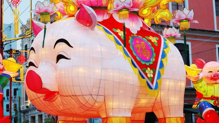 Unmissable events in 2019 – the Year of the Pig thumbnail image