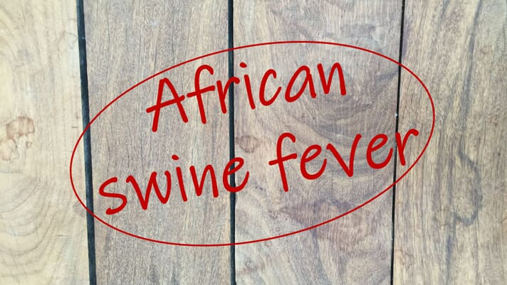 Haiti confirmed positive with African swine fever thumbnail image