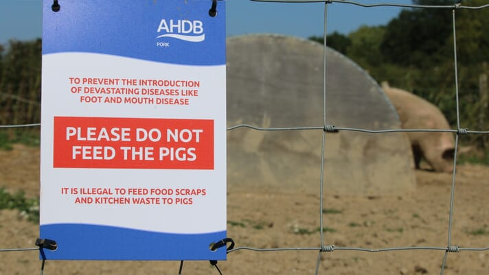 Minimum biosecurity measures in outdoor production thumbnail image