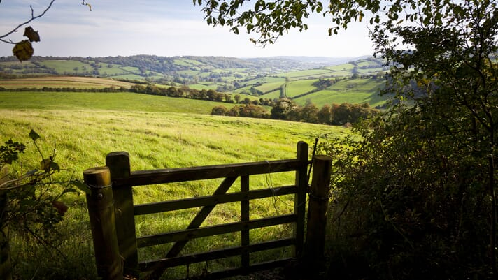 What the NFU is doing to create a safer, cleaner, greener rural Britain thumbnail image