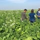US warns farmers not to plant unsolicited seeds from China thumbnail image