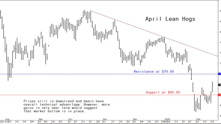 US hog markets stabilise and higher prices likely in weeks ahead thumbnail image