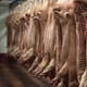 Belgian meat processing plant confirms 67 COVID-19 cases thumbnail image