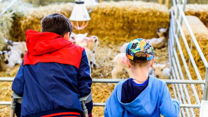 Careers in food and farming: inspiring the next generation of STEM graduates thumbnail image