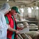 Canada's pork producers seek government help to deal with COVID-19 fallout thumbnail image