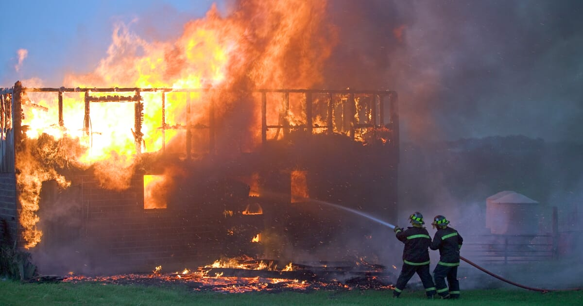 Report Estimates That Over 1 4 Million Farm Animals Died In Barn Fires In 2020 The Poultry Site