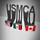 USMCA launches amid increasing threat of disputes thumbnail image