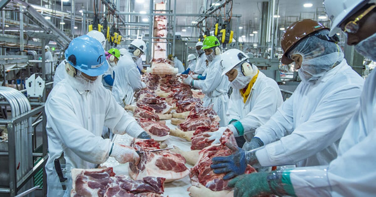 COVID-19 could have catastrophic impacts on US pork supply chain ...