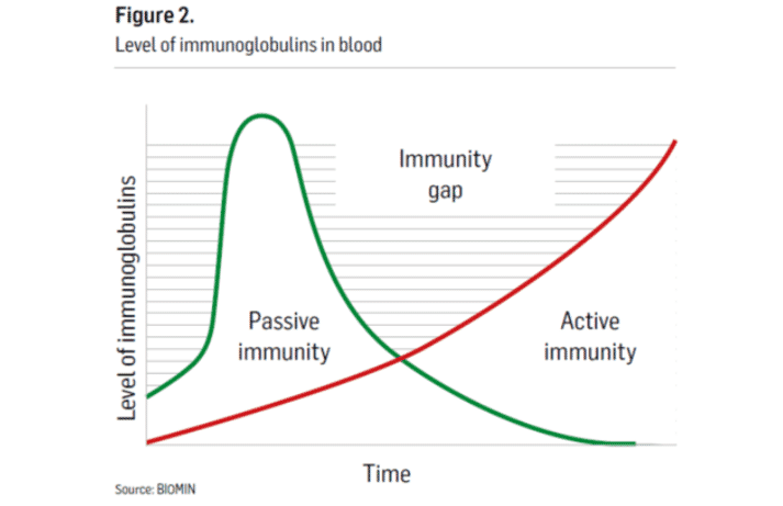 Figure 2. Level of immunoglobulins in blood