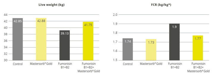 Figure 3: Mastersorb® Gold boosts performance for pigs fed a fumonisin-contaminated diet