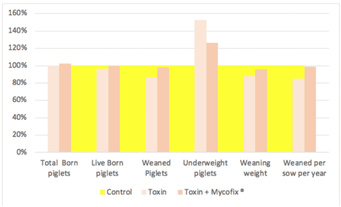 Figure 6. Effect of ZEN and DON on reproductive indices. The yellow area represents the control group, presented as 100 percent performance.