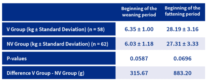 Table 2. Average body weight per piglet in the evaluated study days in vaccinated group (V) and non vaccinated group (NV)