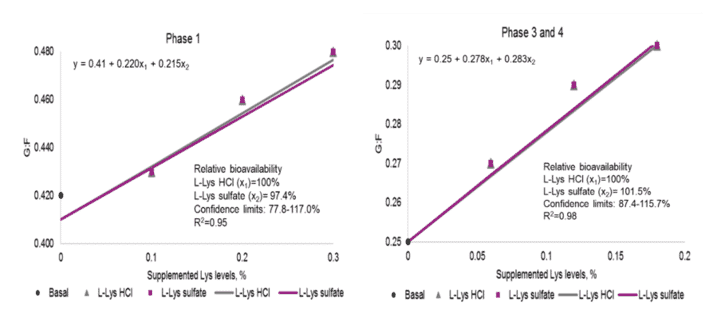 Figure 1. Relative bioavailability of L-Lys sulfate compared with L-Lys HCl for G:F.