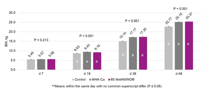 Figure 1. Effect of 100 parts of MHA-Ca and 65 parts of MetAMINO® (DL-methionine) on body weight of nursery pigs.