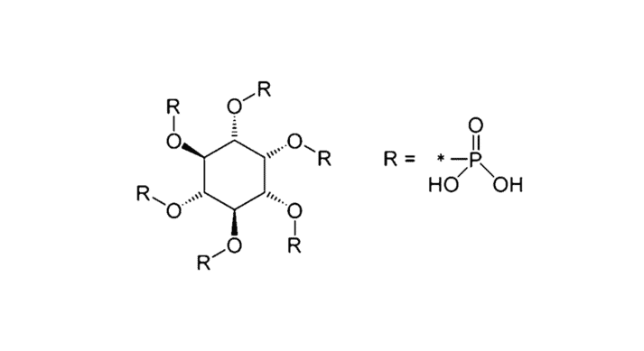 Fig 2. Phytic acid structure
