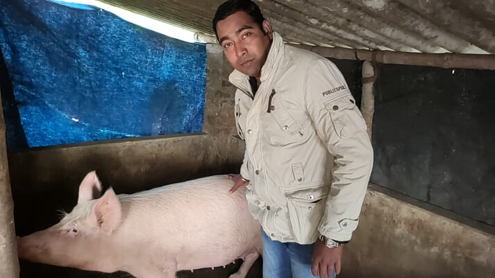 Amit Das, pig farmer based in Bon Hooghly village