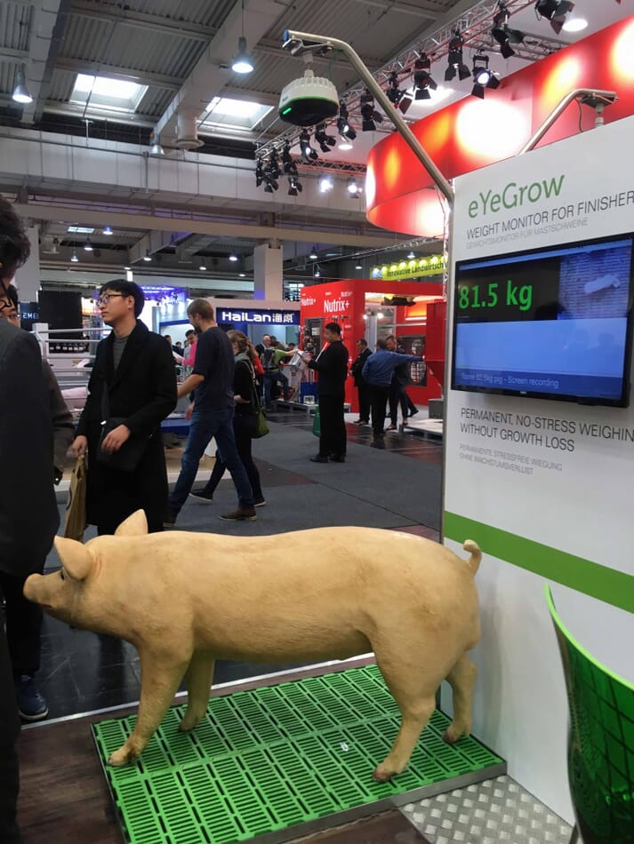 Fancom's 3D eYeGrow provides information on average weight and daily growth rate at the herd level