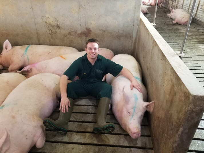 Moving forward, Rooda knew that he could apply his experience and knowledge gained so far to design an innovative product to the pig industry that would benefit both pigs and producers