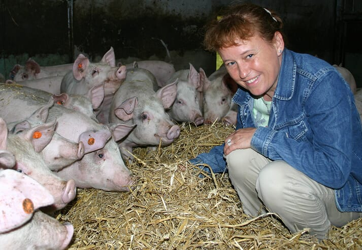Mette Herskin interacting with young pigs