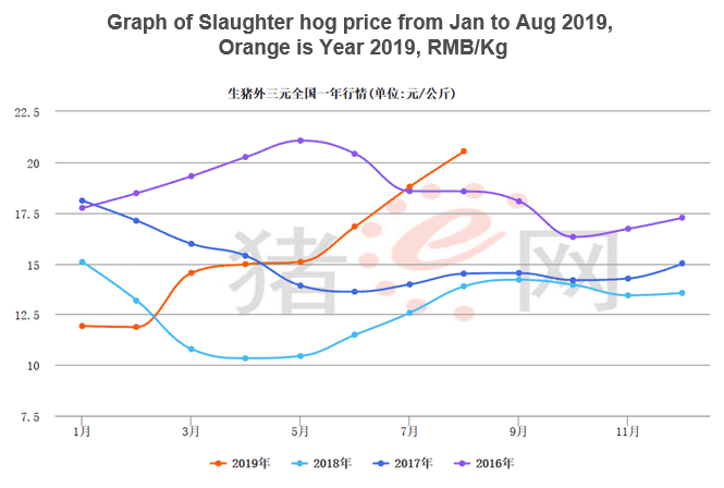 Slaughter hog price from January to August 2019