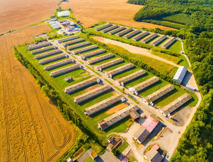 livestock mega farm surrounded by crop fields