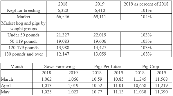 USDA 1 June hogs and pigs report