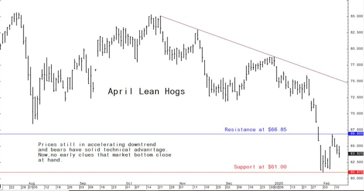 Prices still in accelerating downtrend and bears have solid technical advantage.