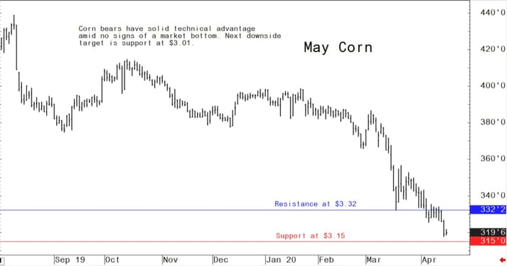 US corn bears have solid technical advantage amid no signs of a market bottom
