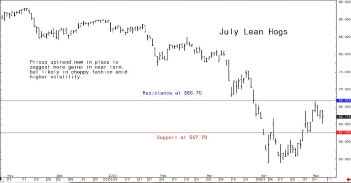 US lean hog futures graph showing a positive uptrend in price