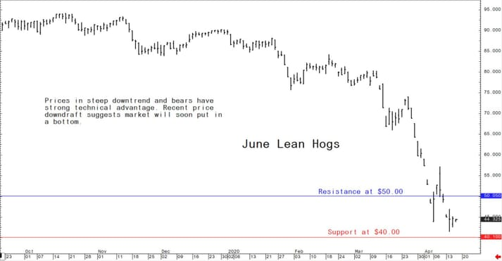 Lean hog prices in the US in steep downtrend and bears have strong technical advantage.