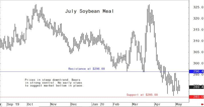 US soybean meal futures graph showing a positive uptrend in prices