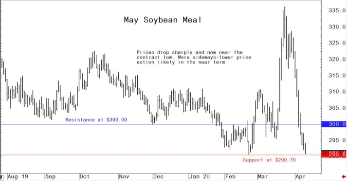 Graph showing US soybean cake and meal markets: Net sales of 193,300 MT for 2019/2020 were up 55 percent from the previous week and 23 percent from the prior 4-week average