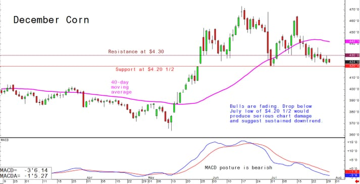 Bulls are fading. Drop below July low of $4.20. 1/2 would produce serious chart damage and suggest sustained downtrend.