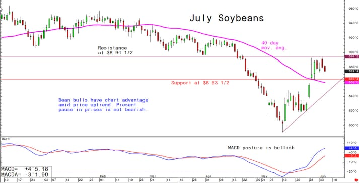 Bean bulls have an advantage as the price is on an upward trend