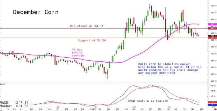 Bulls work to stabilise market. Drop below the July low of $4.20 1/2 would produce serious chart damage and suggest downtrend