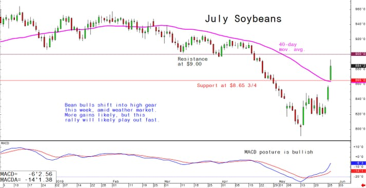 Bean bulls shift into high gear this week, amid weather market. More gains likely, but this rally will likely play out fast