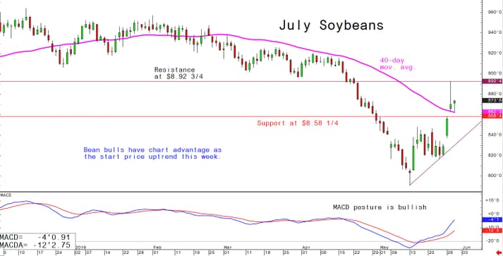 Bean bull have chart advantage as the start price uptrend this week