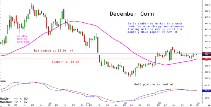 Bulls stabilise market this week. Look for more choppy and sideways trading all the way up until the monthly USDA report on 8 November