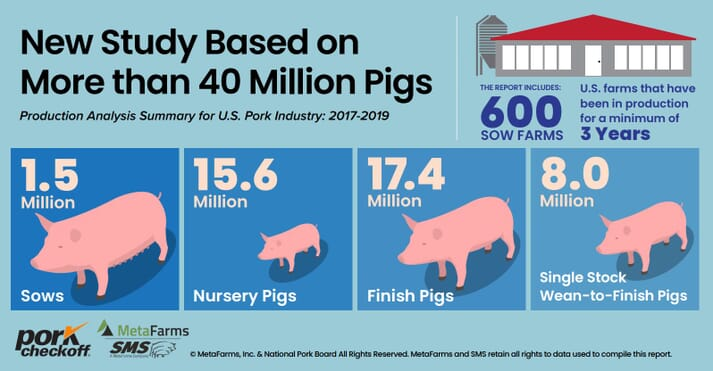 Researchers compiled data from millions of pigs from all phases of production that had been in production for a minimum of three years to establish multi-year comparison analysis to ensure an accurate picture of the productivity of the national swine herd. The 2019 dataset represents 1,588,246 sows across 600 farms, as well as 15,666,136 nursery pigs, 17,479,763 finish pigs and 8,023,610 single-stock wean-to-finish pigs.
