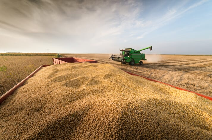 Green combine harvester in a field, collecting soybeans